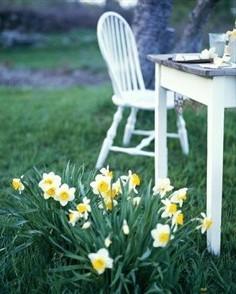 lettre  mon jardin lettre-a-mon-jardin.jpg