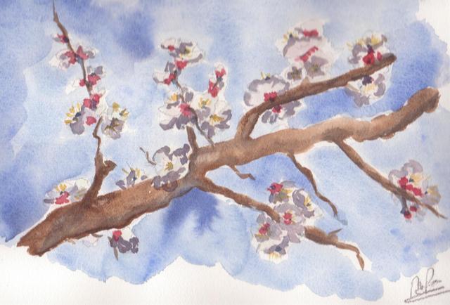 printemps printemps.jpg
