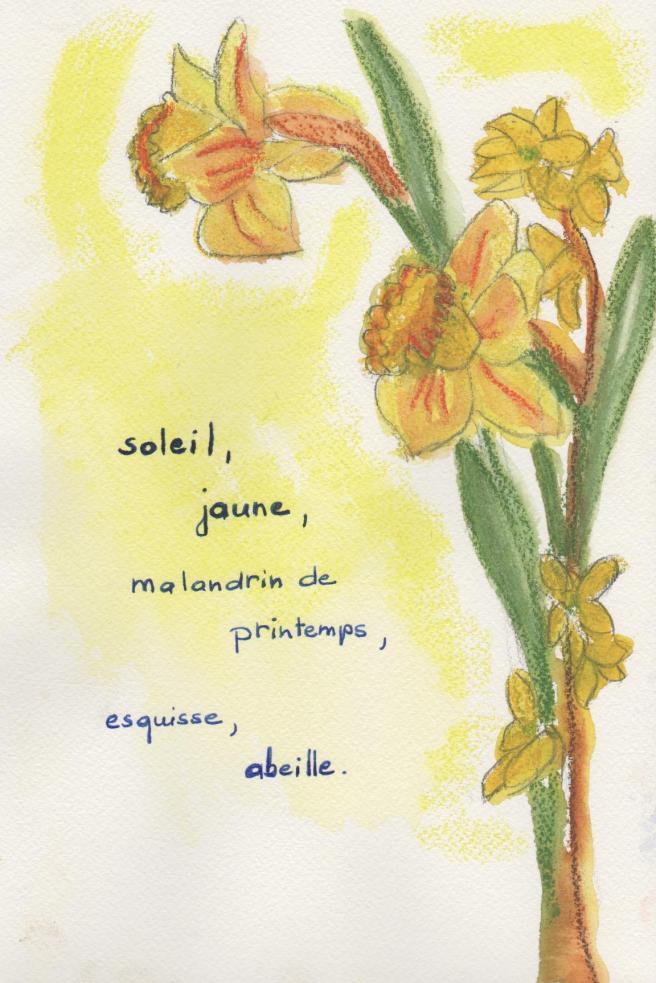 illustration fleurs 002