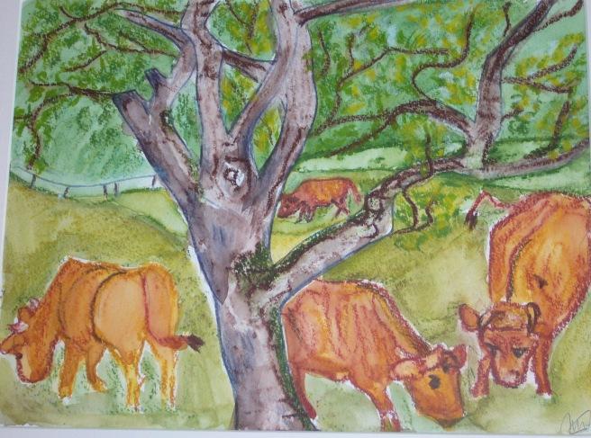 pré aux vaches